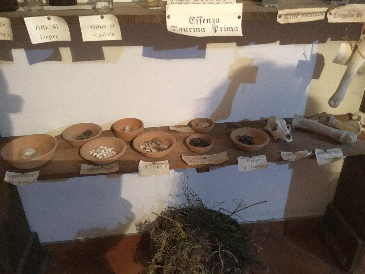 museo erbe teggiano