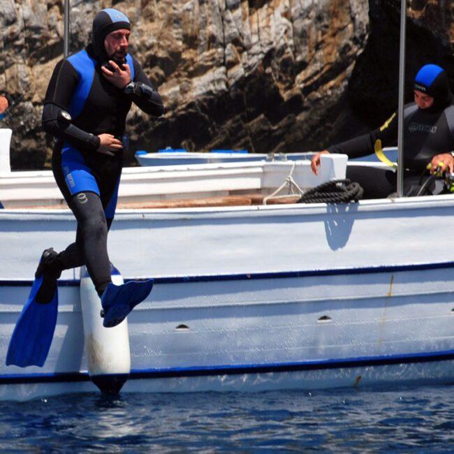 Scuba diving e snorkeling sulla costa del Cilento