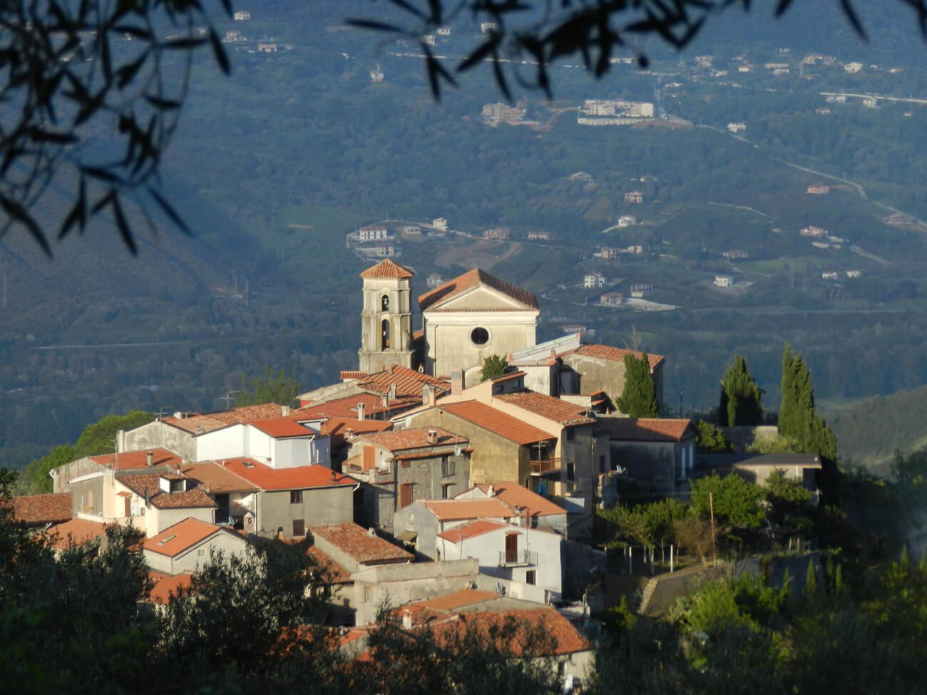 Bosco di San Giovanni a Piro in CIlento
